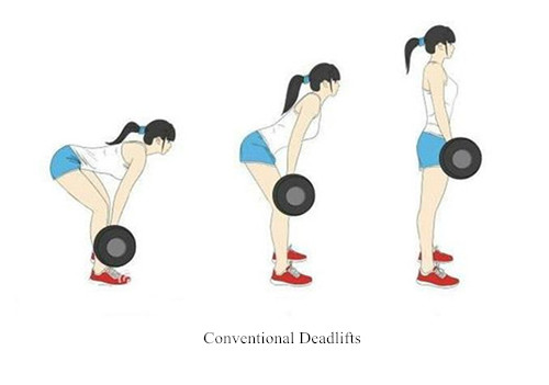 Master the Deadlift with the 3 Movements