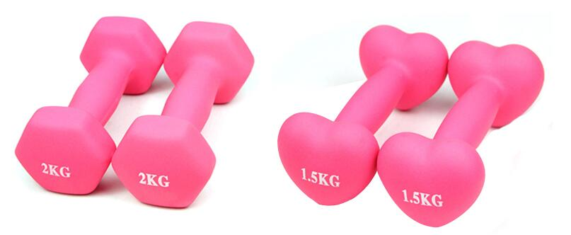 dipping dumbbell sets for ladies